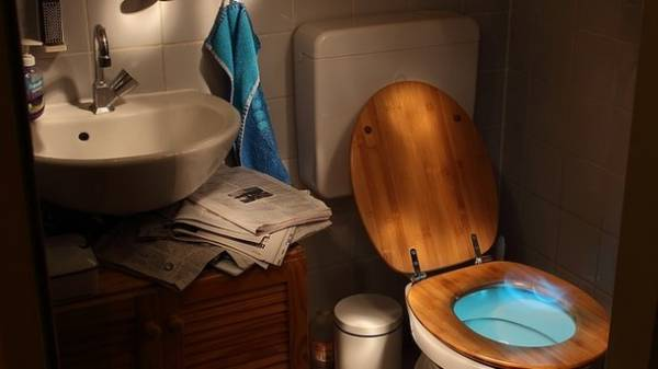 What happens if you pour vinegar into the toilet tank: a ...